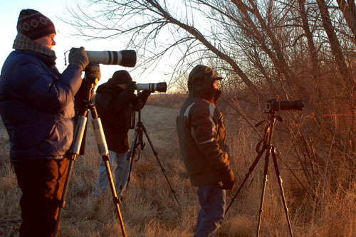 Participants at Bosque del Apache