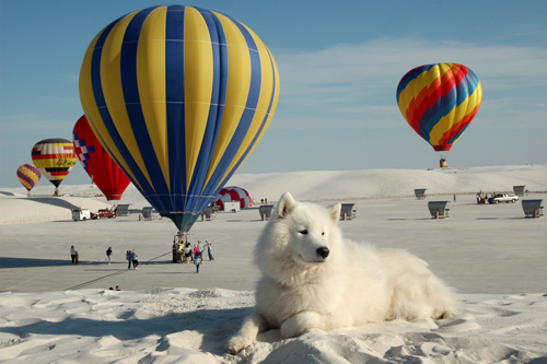 White Sands Balloon Festival, NM