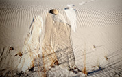 White Sands vision of Mescalero Apache